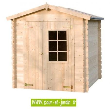Abri de jardin AZUR 2x2 en bois de 19mm d'épais