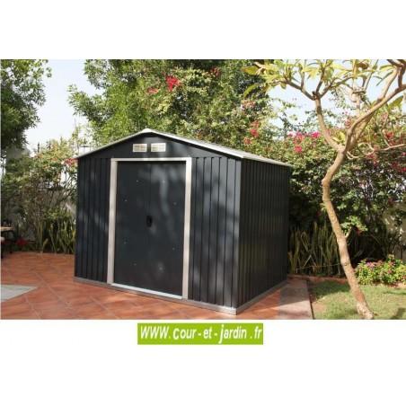 Abri de jardin métal COLOSSUS 10x8 Duramax (321x242) ext.