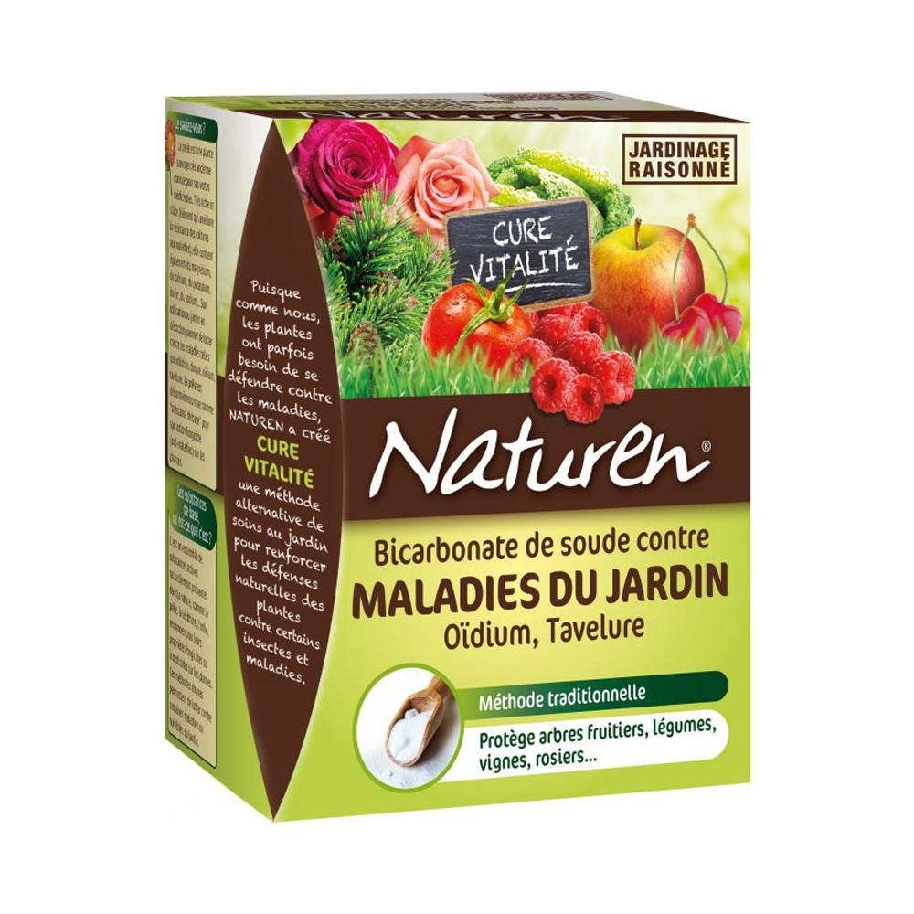 Bicarbonate De Soude Contre Les Pucerons bicarbonate de soude - traiter - entretenir - cour et jardin