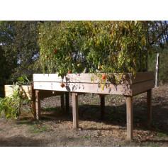 Table potagère TPO04 de 100 x 200cm en situation. Cette table de culture ou potager sur pieds est en bois traité classe 4.