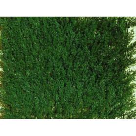 Haie artificielle Feuilles de Thuyas vert foncé- Plaques Clipsables