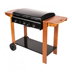 Barbecue Plancha 2 en 1