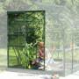 Serre jardin Venus 7,5m²