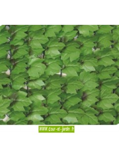Haie artificielle feuilles de Lierre  côté recto