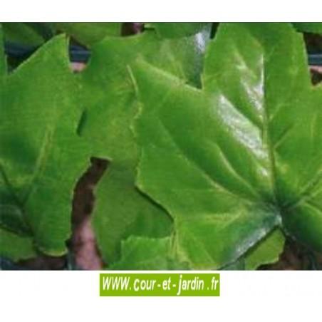 Haie artificielle feuilles de Lierre  gros plan