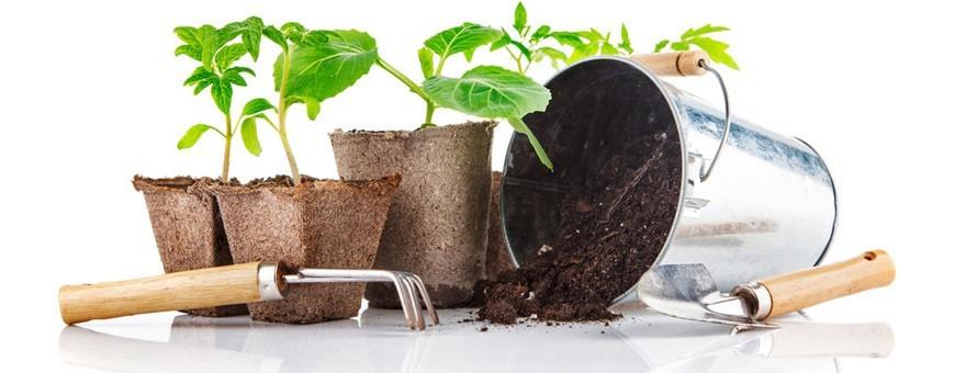 Petits outils de jardin à main